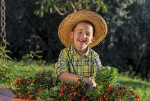 Enjoy garden / In estate o in inverno, non rinunciare a vivere il giardino a modo tuo.