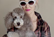 Lotz a POODLES with PEOPLE / Poodles in photos with people / by Natalie McGee (Natalya Dunchouk)