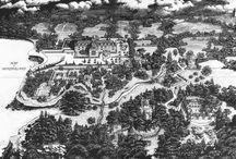 Wonderland maps