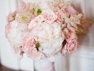 flowers for irene / by Bethany Berg
