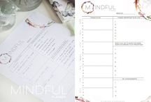 Planning with a planner