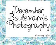 Wedding Planning Tips / by December Boulevarde Photography