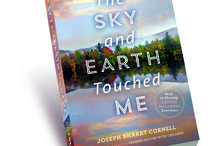 The Sky and Earth Touched Me / New book by Joseph Cornell- June 2014