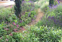 North London Garden / a BALI award winning garden