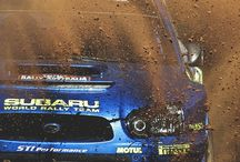 Rally Race Shit