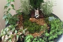 Gardening inside