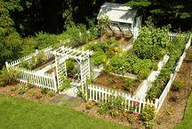 Gardens / Nature.