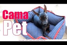 CAMA PET