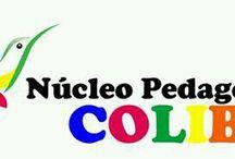 Educação Infantil - Colibri