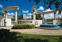 Barbados Parks & Recreational Areas / All across Barbados you'll find magnificent parks filled with tropical blooms. These are places to relax, for children to play, and for locals & visitors to chat & enjoy each other's company.