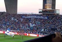 dragon stadium