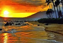 Sunset and Tropic Placies