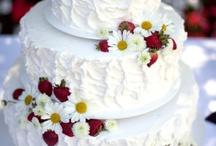 Daisy Wedding and PArty / casamento de margaridas verão -  summer daisy wedding