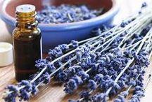 AUTOPRODUZIONE COSMESI NATURALE / Autoproduzione di sapone e coamesi naturale. Creare in cucina.