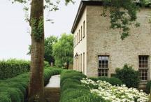 Garden / Garden design