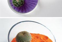 creative planting