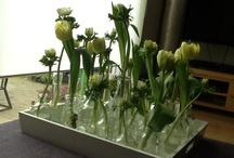 Flower decoration / Little vases with tulips and ranonkels.