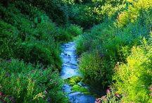 Washington USA  - National Park