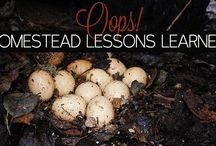Homesteading Ideas / by learningandyearning