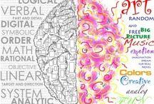 Brain / Hoe werken onze hersenen?