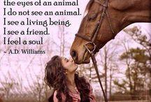 Exactly--so true! / by Jennifer Samuels
