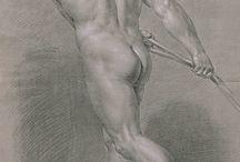 Academy Drawings - Spain