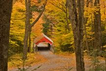 Covered bridges / by Charlyn Baillie