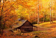 Farebná jeseň / Zbožňujem tú farebnosť jesene....