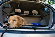 "Best Cars for Dog Lovers / I haul around four large dogs in my car and I'm always looking for that ""perfect car."" Most cars can accommodate dogs but I'm looking for one that's roomy enough for them, let's them look out the window and is easier to keep clean."