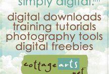Digital Scrapbooking  / by Shantalina Tyler