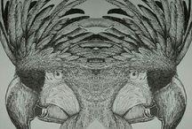 artnimal / live n nature