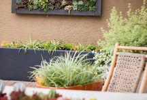California Style Gardens