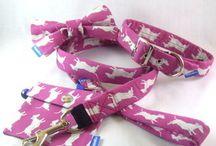 Dog Collars Design