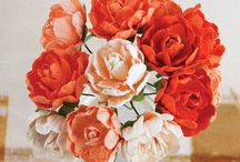 Paper Flowers / paper flowers