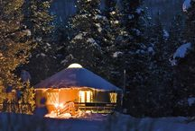 Valentine's Day / Ideas for celebrating romance a Mile High.  / by 5280 Magazine