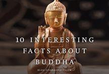 Buddha / by Brittany Baldwin
