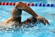 Beginner Swim Workouts / Want to make that transition from swim instruction to swimming for competition or for fitness?  Start off small, and work your way up!    These workouts contain a distance of 500-1200 yards/meters.