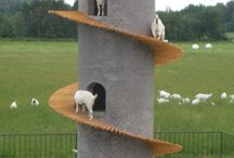 Goat Towers