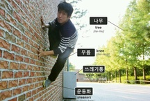 Learn Korean Vocabulary