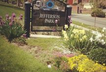Jefferson Park, Denver / Homes, New Happenings and Fun in Jefferson Park - Central Denver