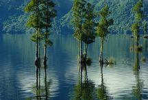 rivers, lakes and waterfalls / by Sario