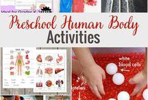 Human Body preschool theme