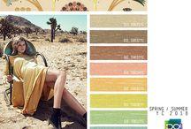 SS18 colours