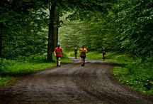Tioga County, PA Endurance Challenges / If you're a beginning competitor, a well-seasoned ultra marathon runner, an avid mountain bicyclist, or anywhere in between, there's an endurance challenge for you in Tioga County in 2014!