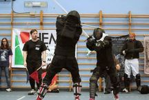 HEMA, Historical European Martial Arts / Everything about Historical European Martial Arts, training and historical manuals. Let's discover this wonderful and lost arts!
