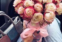 Flores\ Planta