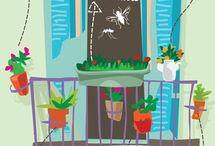 Rovarírtó növények