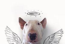 DOG Artist Art / Artist incorporates best friend into his work