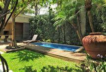 Pequeños jardines tropicales