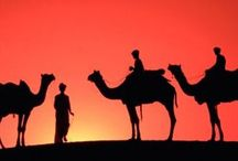 Frontiers Bespoke / Frontiers Bespoke specialises in arranging tailor-made journeys & luxury holidays around the world.